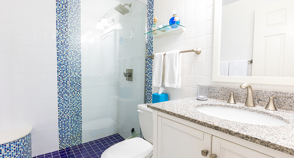 4. Master Bathroom